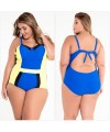 Colorblock Plus Size One-Piece Swimsuit