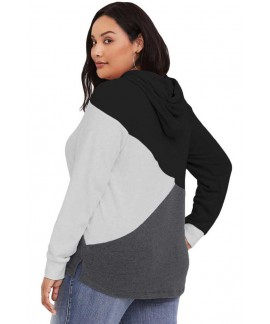Hooded Tricolor Blocked Plus Size Top