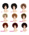 Cosplay Africa short curly Heat-Friendly Synthetic wig